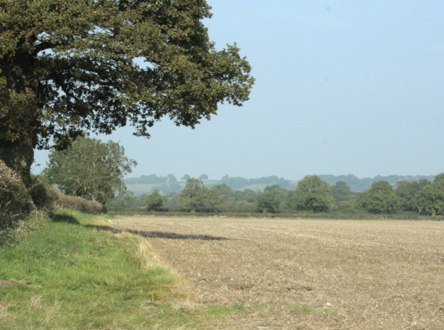 2009 : North east from the B4465 Wapley Road