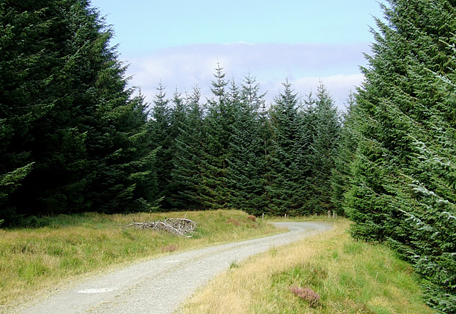Tywi Forest road on Cefn Isaf, Ceredigion