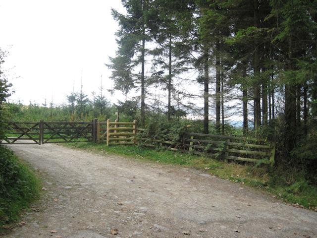 Footpath to Trelystan