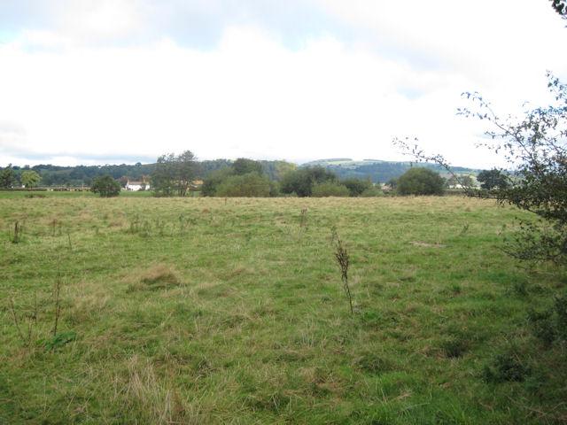 Meadow at Dolydd Hafren