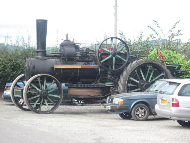 Unusual resident of Pub car park