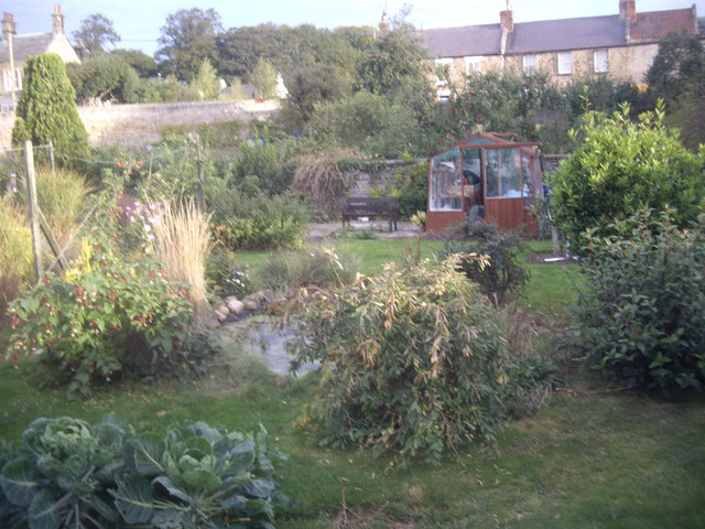 A domestic garden in Waters End