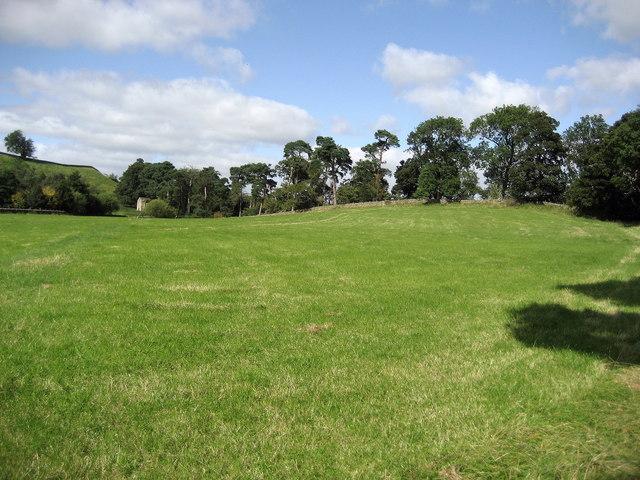 Pasture North of Woden Croft