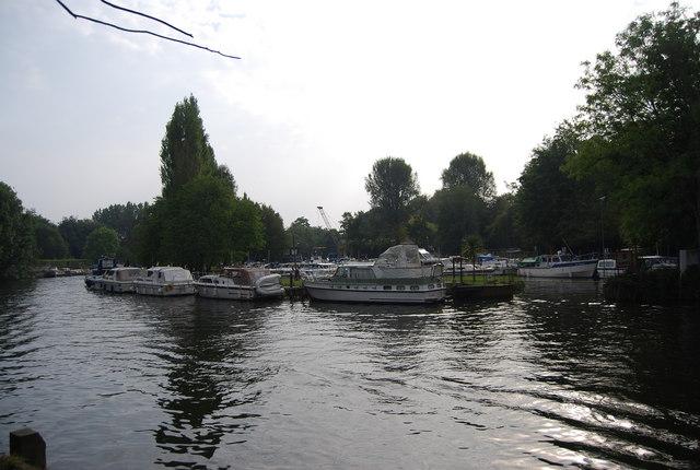 Boats moored at Allington Marina