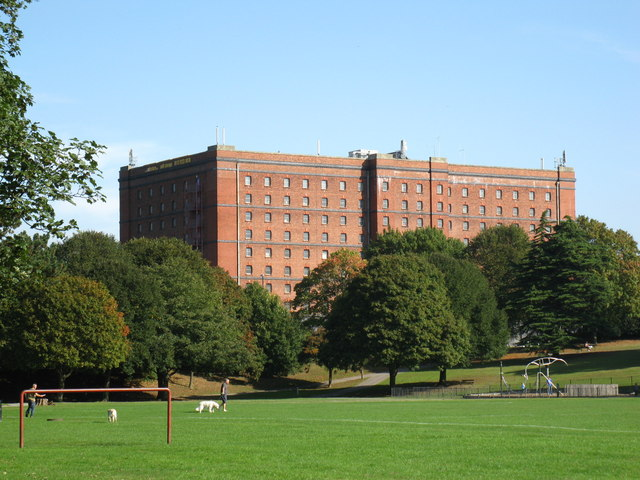 Tobacco Warehouse from Greville Smyth Park