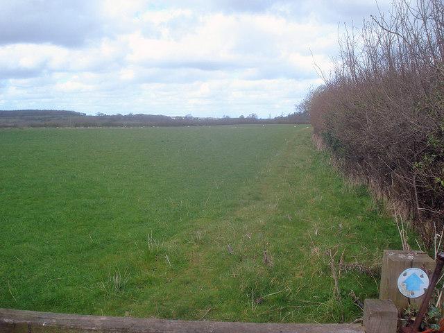 Bridleway to Bockleton
