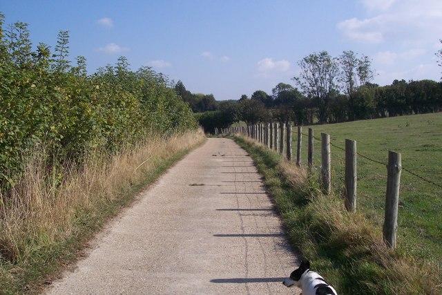 Pattenden Farm access road