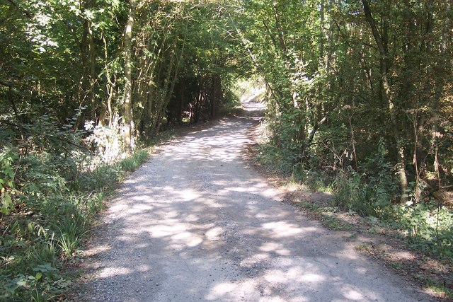 Access road towards Bedgebury Road