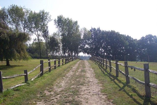Bridleway near Three Chimneys