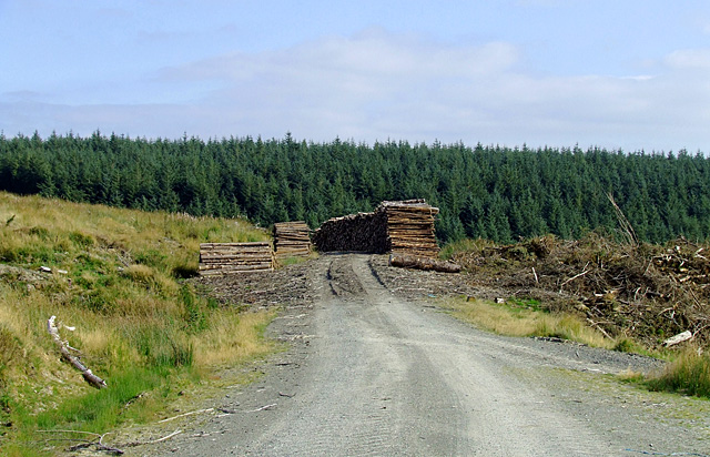 Forestry road at the edge of the Tywi Forest, Ceredigion