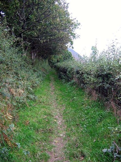 Footpath leaving High Swinside