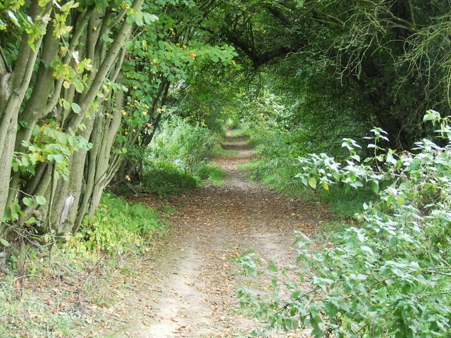 Old road to Coberley mill