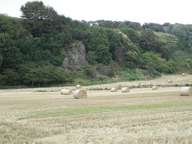 Former sea cliffs,  Warburton