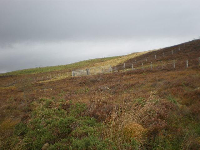 Fencing on Moorland near Migdale