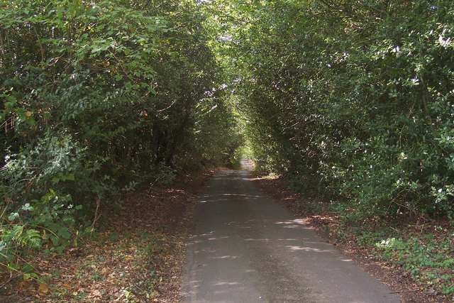 Rogers Rough Road in Park Wood
