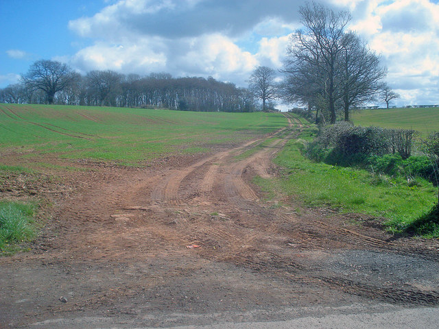 Farm track near Bilfield