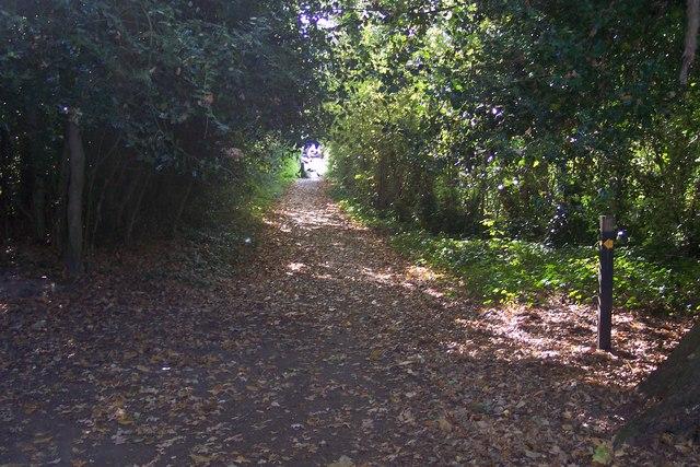 Footpath junction near Kilndown