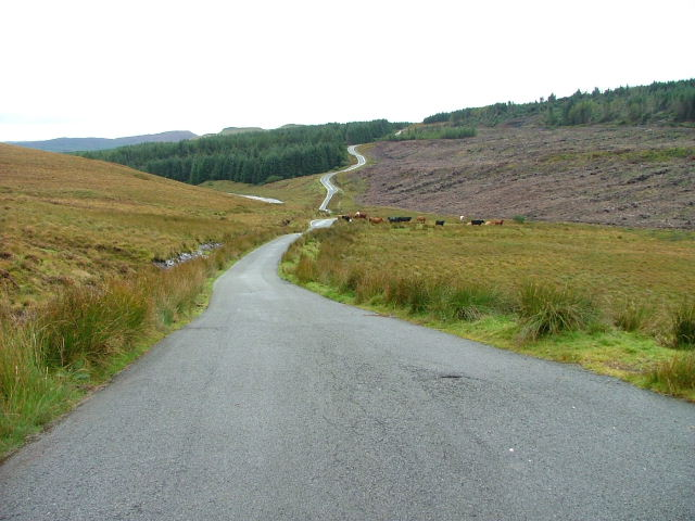 The road to Struan