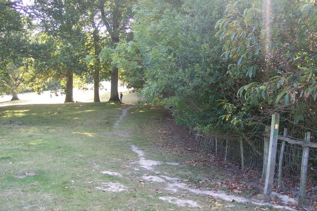 Footpath beside Claypits Wood