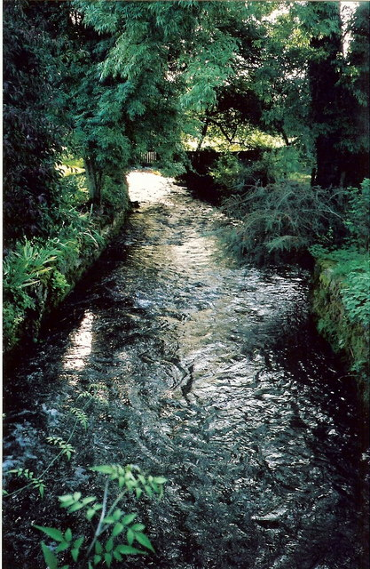 Mill race at windrush mill