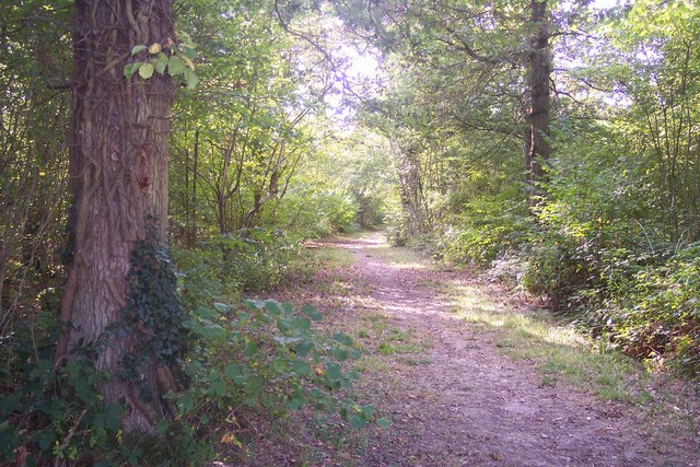 Footpath in Colliers Wood