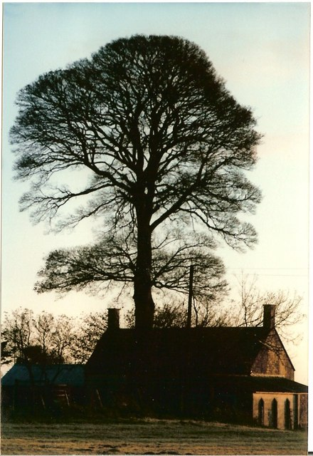 Cottage at Dawn Elkstone