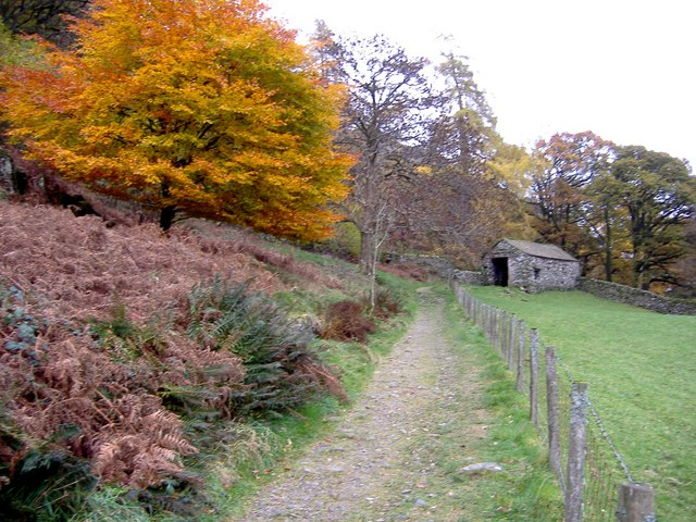 Autumn colours near Crookabeck