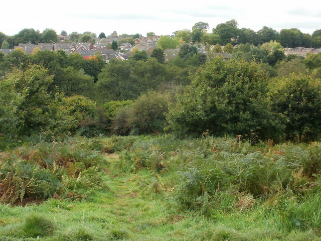 View from highest point on nature trail, Malpas