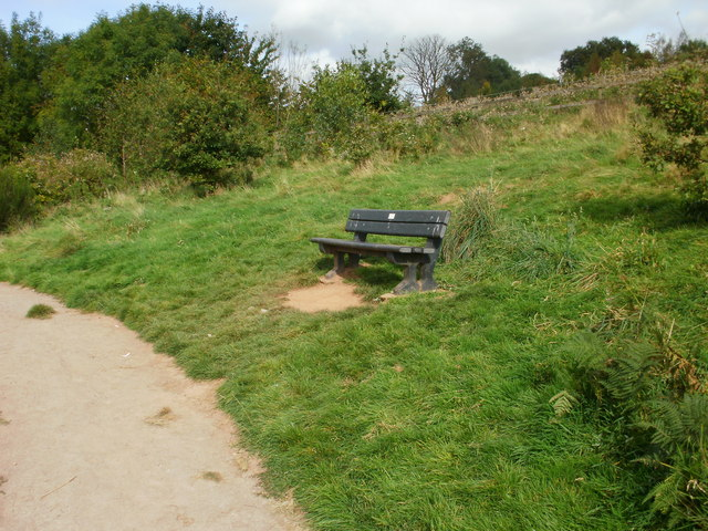 Bench at high point of natural trail, Malpas