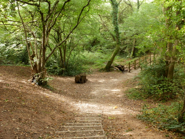 Wooded area of nature trail, Malpas