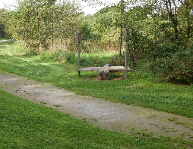 Dragonfly bench, Malpas