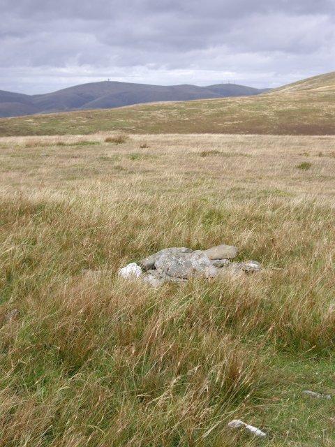 Glenleith Fell