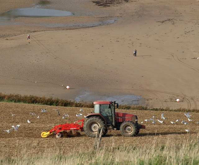 Tractor and beach, Bantham