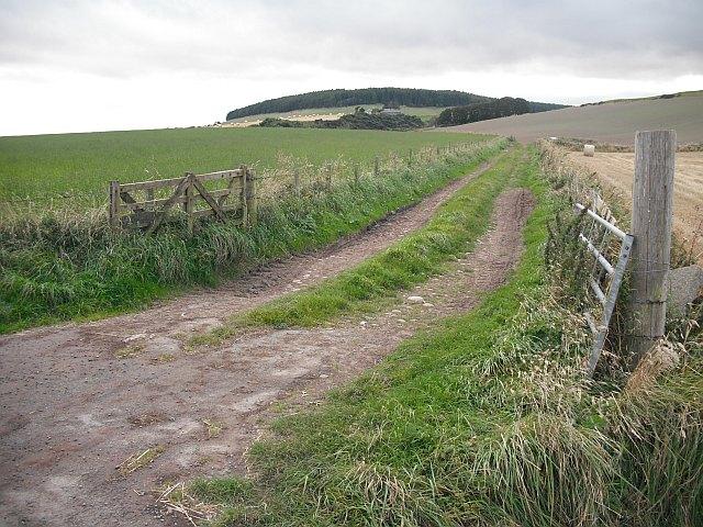 Farm track, Chapelfield