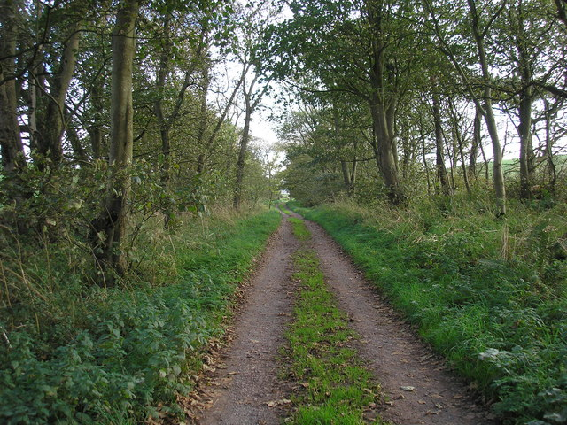 Track leading from Kirkmadrine Church