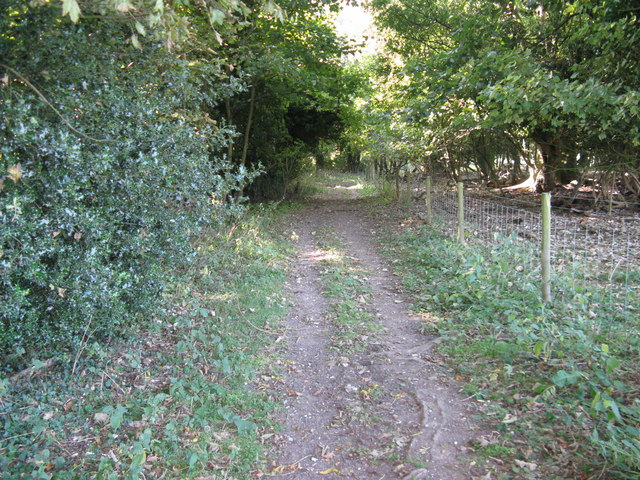 Tree lined bridleway to North Farm