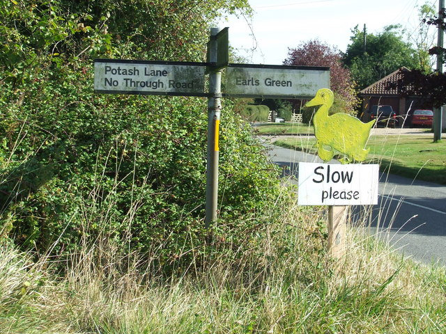 Slow Please