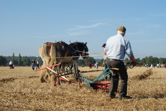 Surrey County Ploughing Match 2009 (6)
