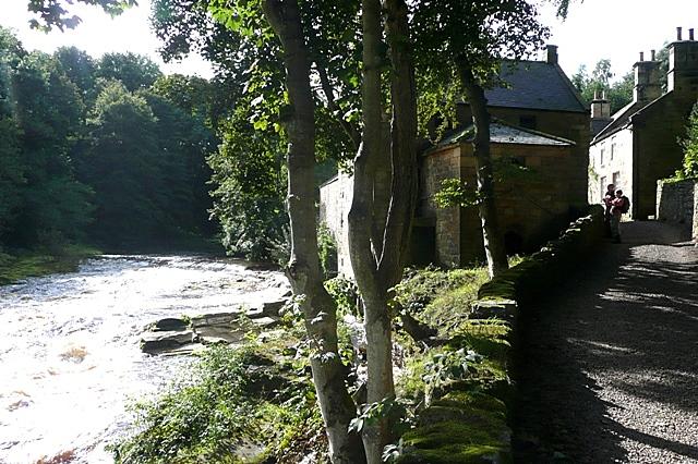 Thrum Mill