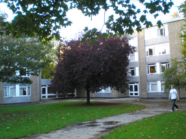 Johnston Halls