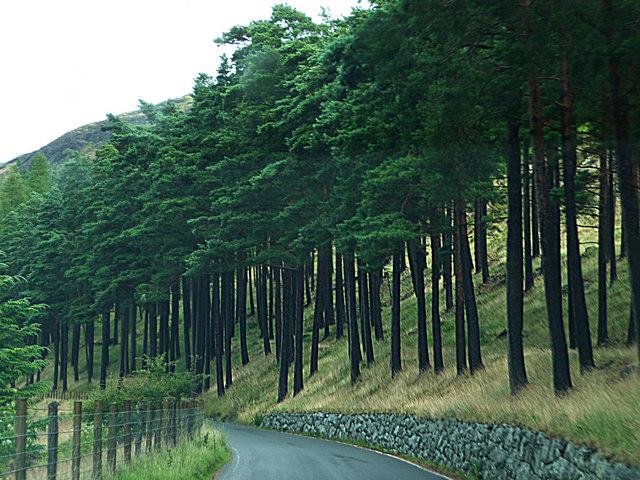 Road alongside Garreg-ddu Reservoir