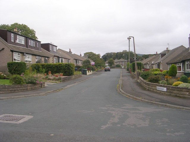Middleway - Daisy Hill