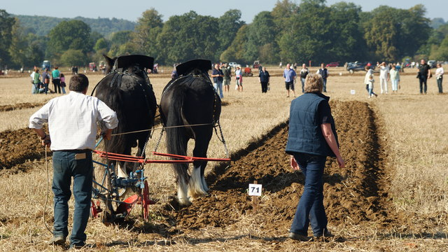 Surrey County Ploughing Match 2009 (12)