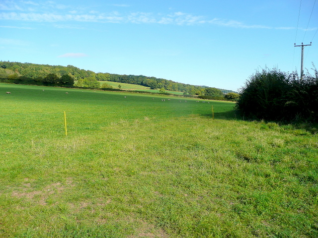 Pasture at Monk Hill 2