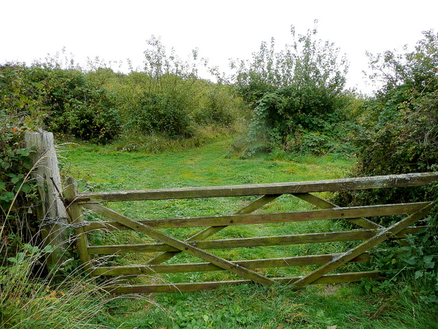 Old gate; old orchard