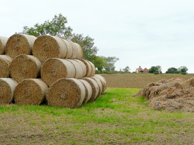 Stack of bales