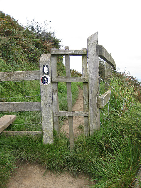 Dog gate by the stile