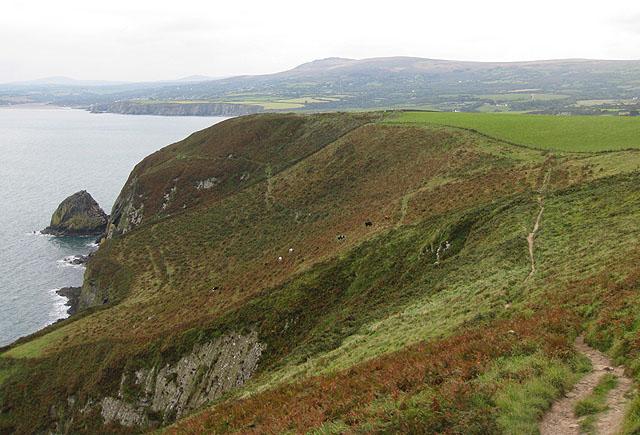Pembrokeshire Coast Path, above Pwll Glas