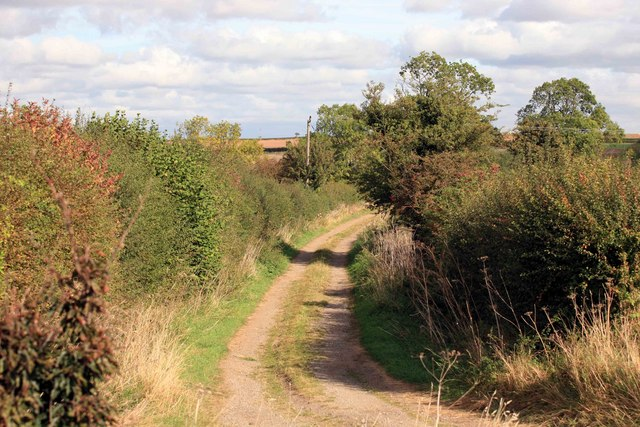 Byway nr Upton with Autumn colours