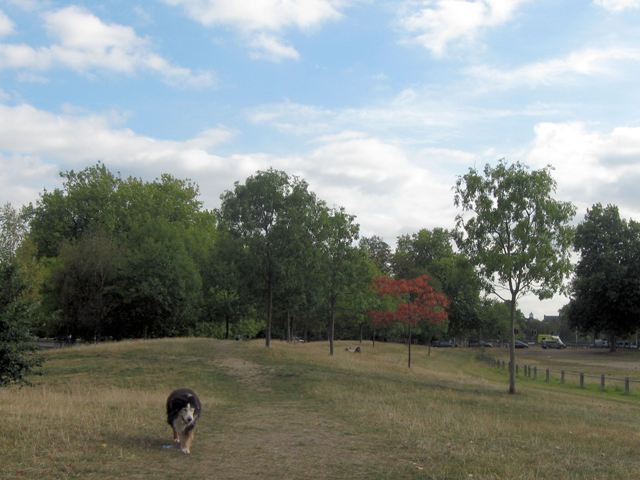 Near Mount Pond, Clapham Common